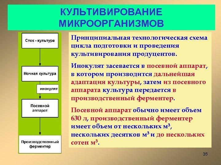 КУЛЬТИВИРОВАНИЕ МИКРООРГАНИЗМОВ Принципиальная технологическая схема цикла подготовки и проведения культивирования продуцентов. Инокулят засевается в