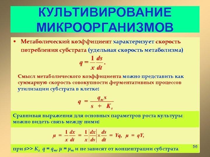КУЛЬТИВИРОВАНИЕ МИКРООРГАНИЗМОВ • Метаболический коэффициент характеризует скорость потребления субстрата (удельная скорость метаболизма) Смысл метаболического