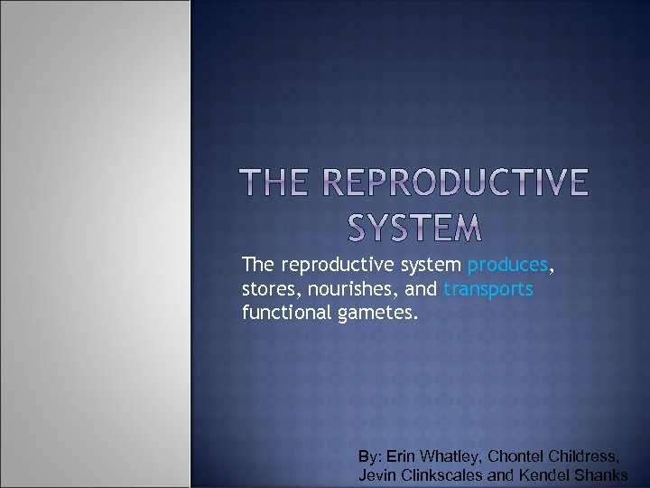 The reproductive system produces, stores, nourishes, and transports functional gametes. By: Erin Whatley, Chontel