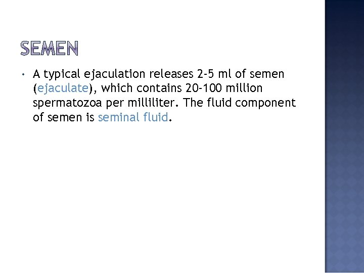 • A typical ejaculation releases 2 -5 ml of semen (ejaculate), which contains