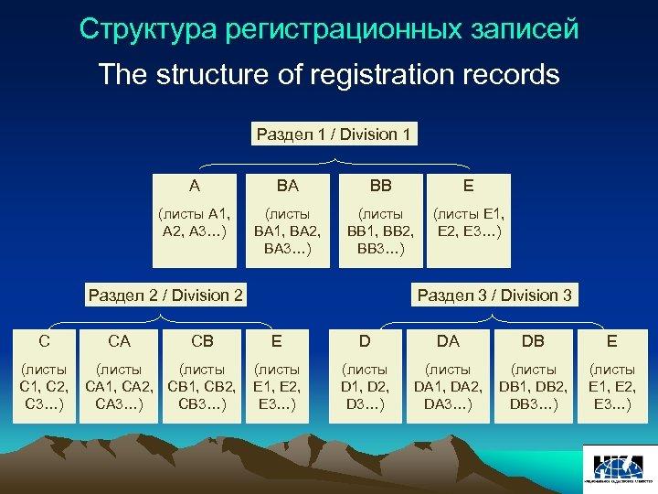 Структура регистрационных записей The structure of registration records Раздел 1 / Division 1 A