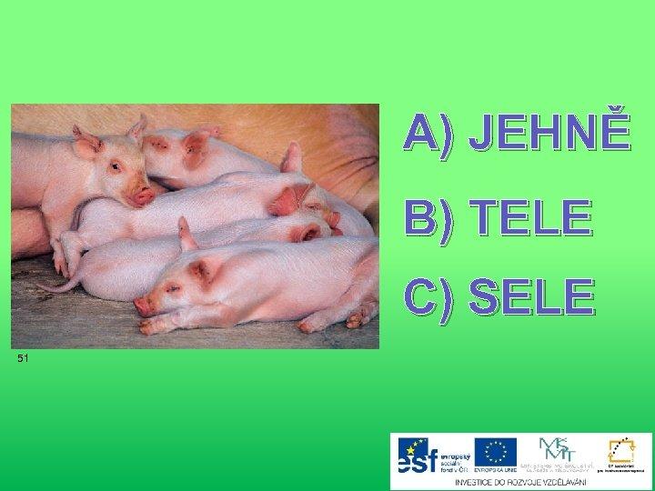 A) JEHNĚ B) TELE C) SELE 51