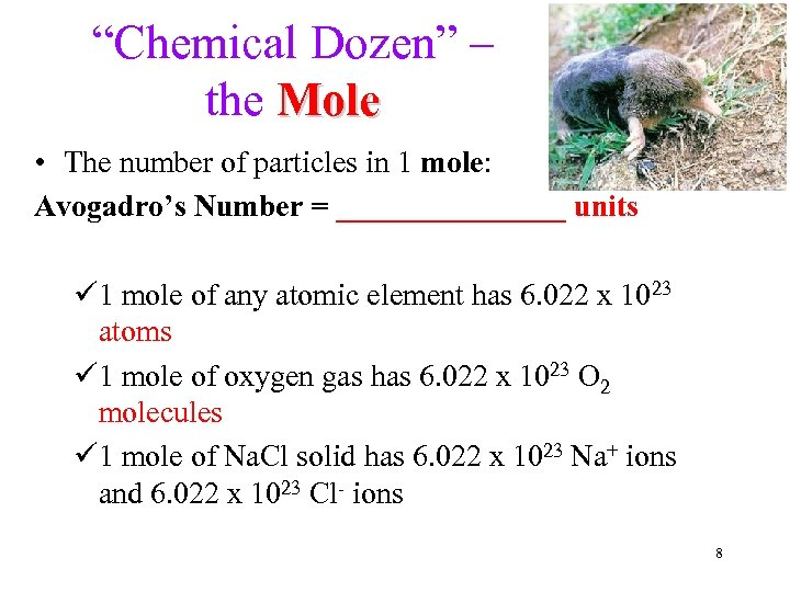 Mole Avogadro s Number Molar Mass percent composition Empirical