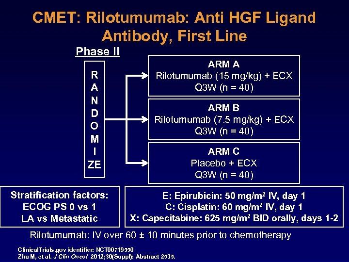 CMET: Rilotumumab: Anti HGF Ligand Antibody, First Line Phase II R A N D