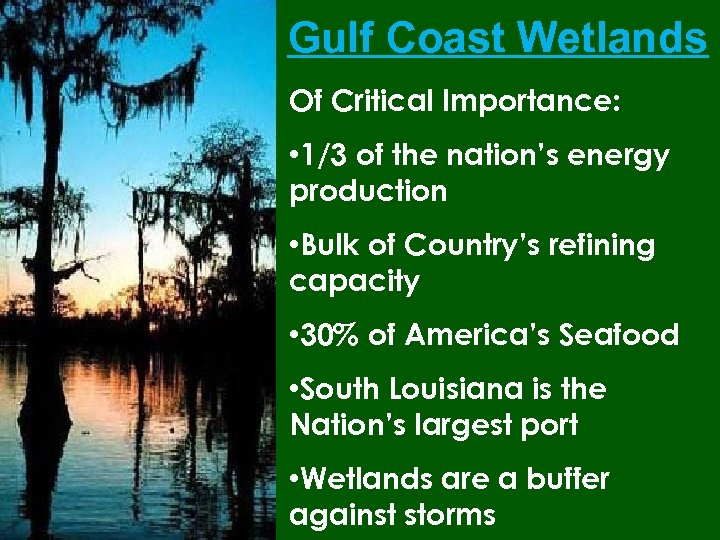 Gulf Coast Wetlands Of Critical Importance: • 1/3 of the nation's energy production •