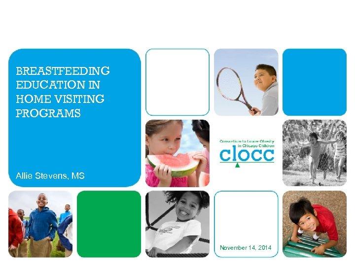 BREASTFEEDING EDUCATION IN HOME VISITING PROGRAMS Allie Stevens, MS November 14, 2014