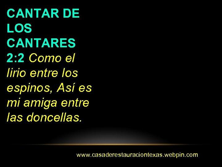 CANTAR DE LOS CANTARES 2: 2 Como el lirio entre los espinos, Así es