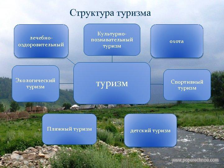 Структура туризма лечебнооздоровительный Культурнопознавательный туризм Экологический туризм Пляжный туризм охота туризм Спортивный туризм детский