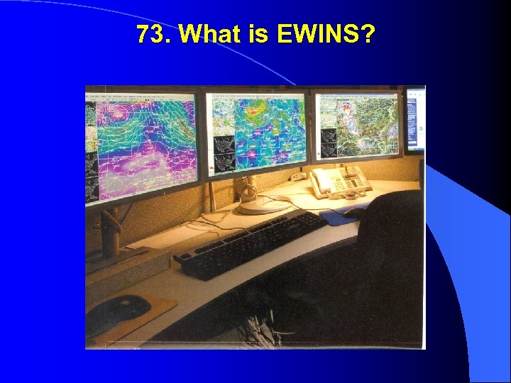 73. What is EWINS?