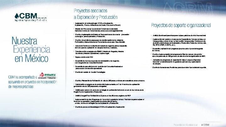 • Implantación de la Metodología VCD® en Exploración, Explotación, Pozos e Infraestructura (Guía