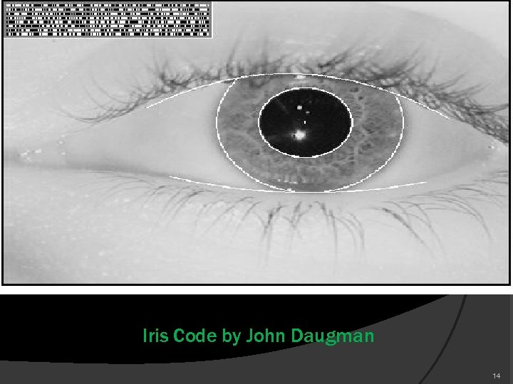 Iris Code by John Daugman 14