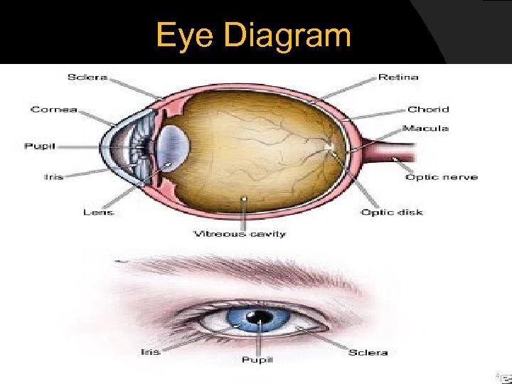 Eye Diagram 4