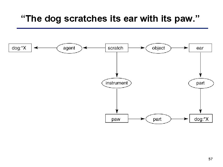 """The dog scratches its ear with its paw. "" 57"