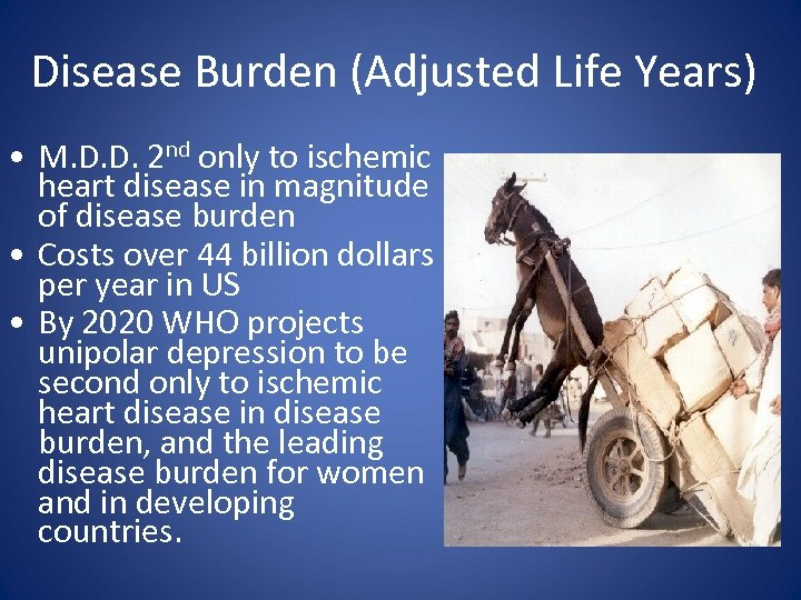 Disease Burden (Adjusted Life Years) • M. D. D. 2 nd only to ischemic