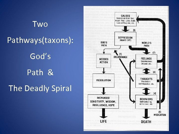 Two Pathways(taxons): God's Path & The Deadly Spiral