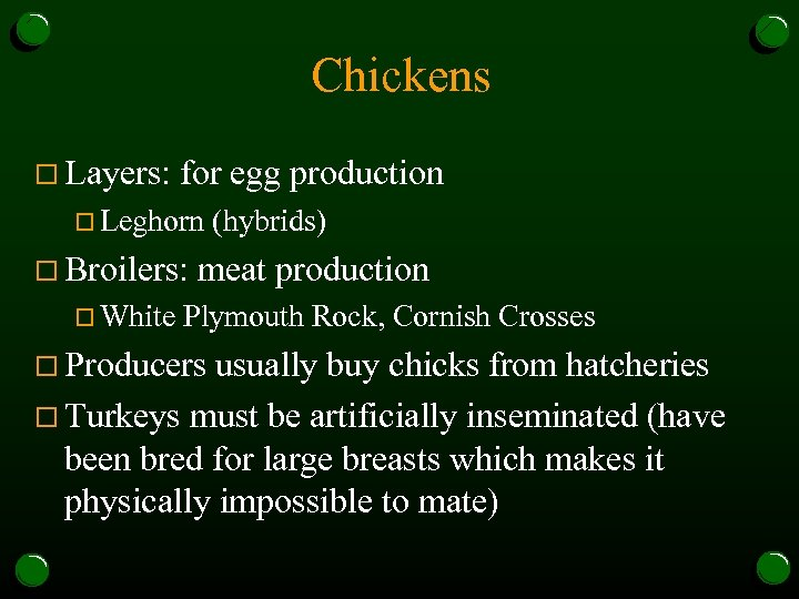 Chickens o Layers: for egg production o Leghorn o Broilers: o White (hybrids) meat