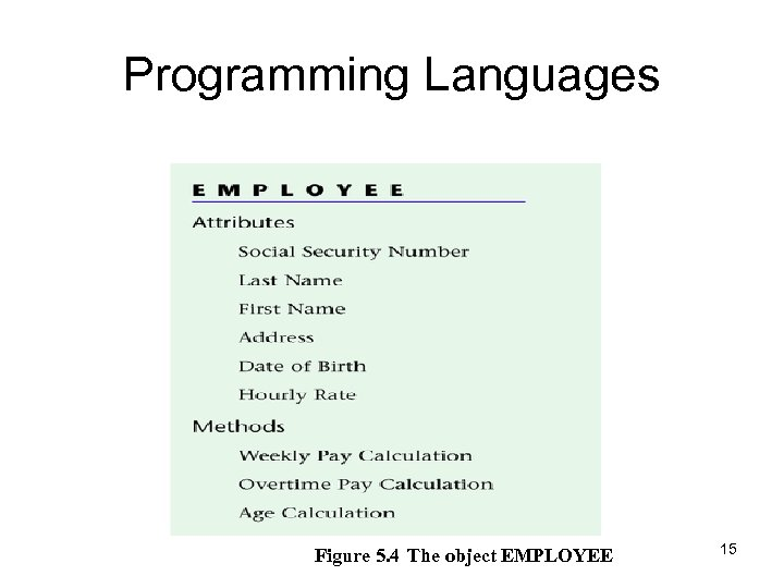 Programming Languages Figure 5. 4 The object EMPLOYEE 15