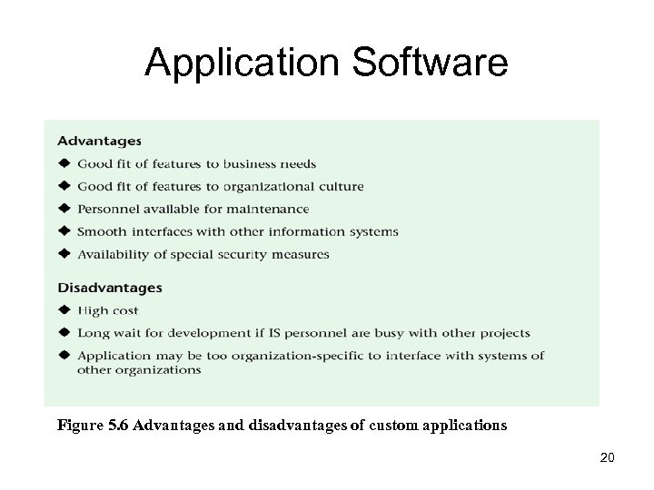 Application Software Figure 5. 6 Advantages and disadvantages of custom applications 20