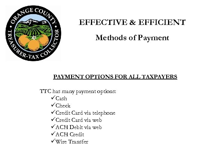 EFFECTIVE & EFFICIENT Methods of Payment PAYMENT OPTIONS FOR ALL TAXPAYERS TTC has many