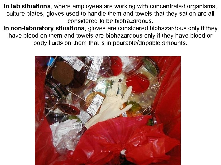 In lab situations, where employees are working with concentrated organisms, culture plates, gloves used
