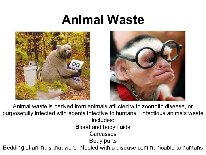 Animal Waste Animal waste is derived from animals afflicted with zoonotic disease, or purposefully