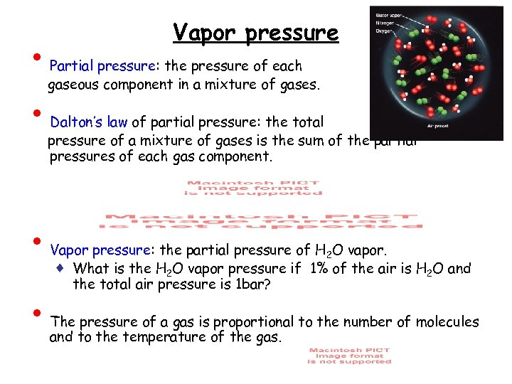 • • Vapor pressure Partial pressure: the pressure of each gaseous component in