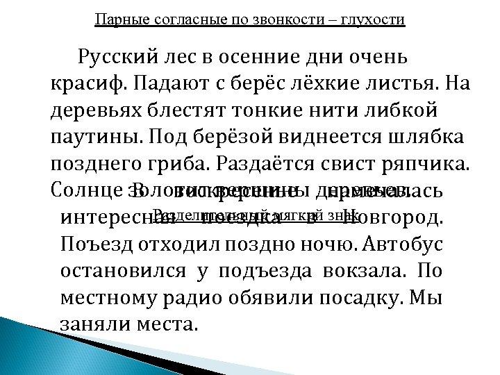 Парные согласные по звонкости – глухости Русский лес в осенние дни очень красиф. Падают