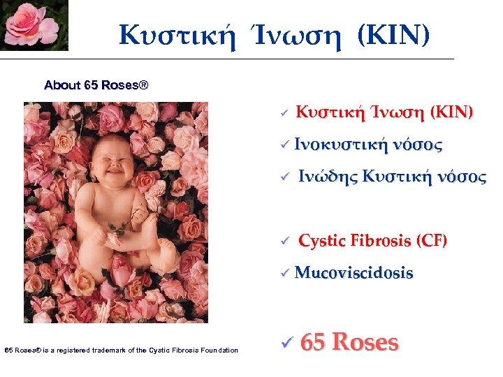 Κυστική Ίνωση (ΚΙΝ) About 65 Roses® Κυστική Ίνωση (ΚΙΝ) ü ü Ινοκυστική νόσος ü