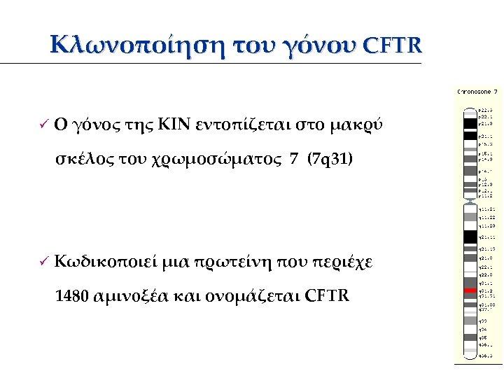 Κλωνοποίηση του γόνου CFTR ü Ο γόνος της ΚΙΝ εντοπίζεται στο μακρύ σκέλος