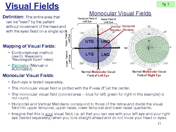 Visual Fields Pg. 3 Monocular Visual Fields Definition: The entire area that • Confrontational