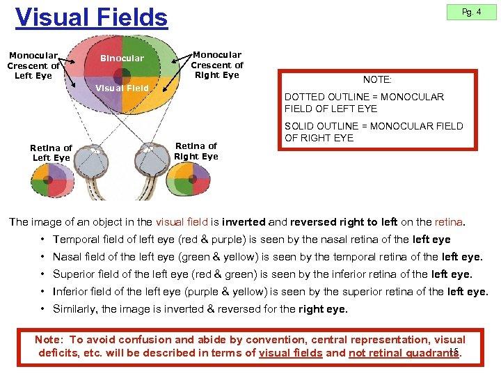 Visual Fields Monocular Crescent of Left Eye Binocular Pg. 4 Monocular Crescent of Right