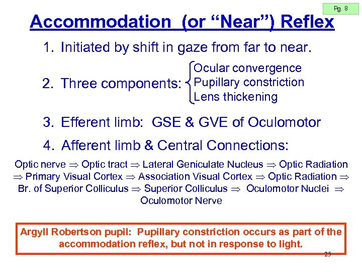 """Pg. 8 Accommodation (or """"Near"""") Reflex 1. Initiated by shift in gaze from far"""