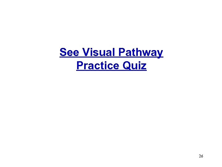 See Visual Pathway Practice Quiz 26
