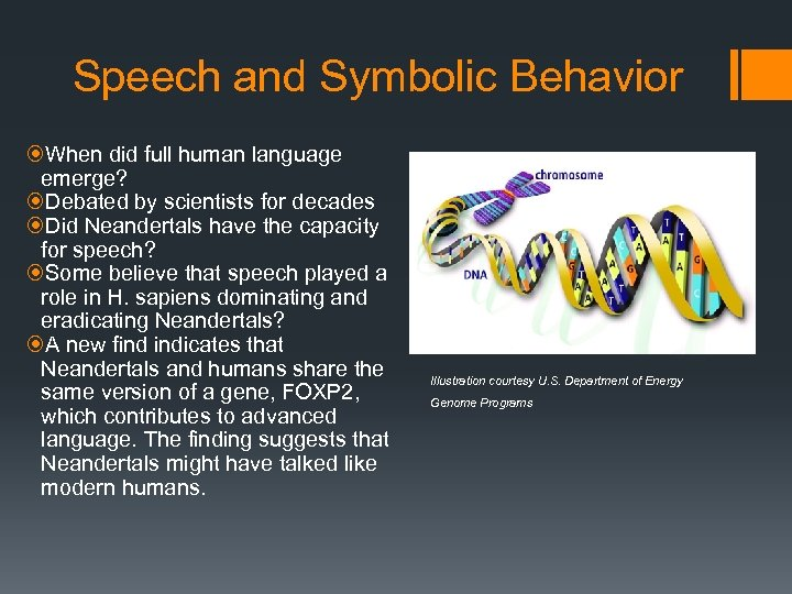 Speech and Symbolic Behavior When did full human language emerge? Debated by scientists for
