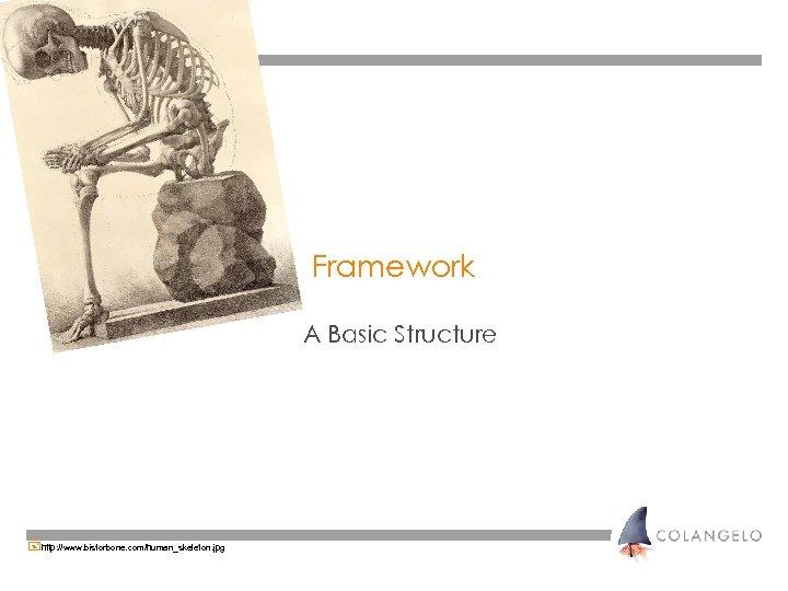 Framework A Basic Structure +http: //www. bisforbone. com/human_skeleton. jpg
