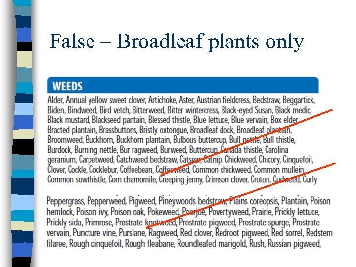 False – Broadleaf plants only