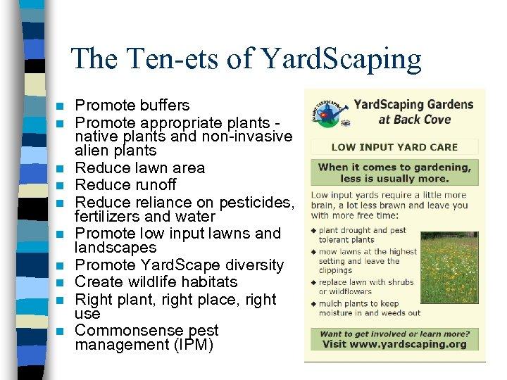 The Ten-ets of Yard. Scaping n n n n n Promote buffers Promote appropriate