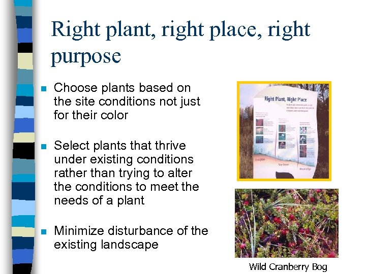 Right plant, right place, right purpose n Choose plants based on the site conditions