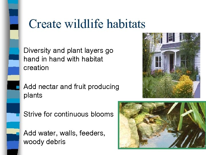 Create wildlife habitats n Diversity and plant layers go hand in hand with habitat