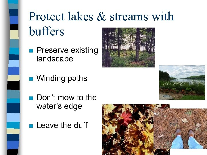 Protect lakes & streams with buffers n Preserve existing landscape n Winding paths n