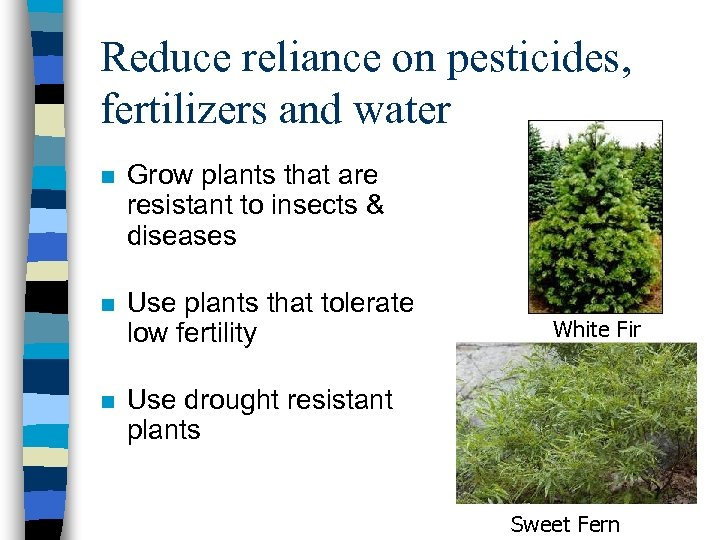 Reduce reliance on pesticides, fertilizers and water n Grow plants that are resistant to
