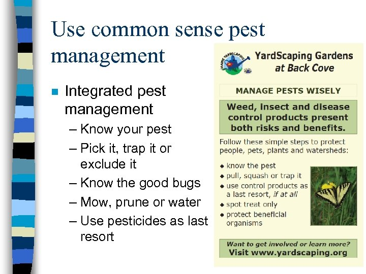Use common sense pest management n Integrated pest management – Know your pest –