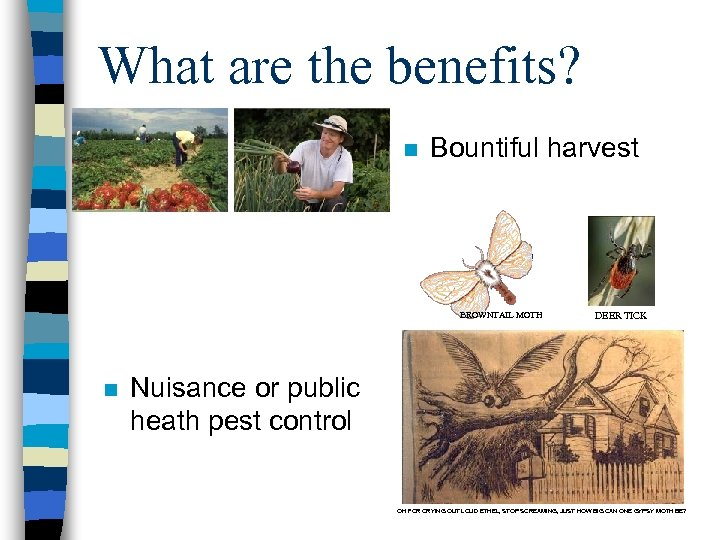 What are the benefits? n Bountiful harvest BROWNTAIL MOTH n DEER TICK Nuisance or