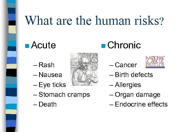 What are the human risks? n Acute – Rash – Nausea – Eye ticks