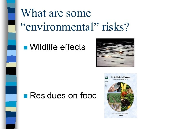 "What are some ""environmental"" risks? n Wildlife effects n Residues on food"
