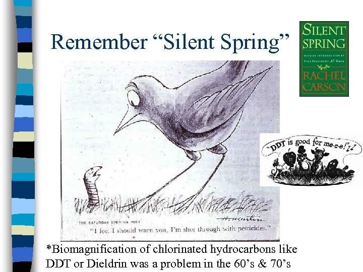 "Remember ""Silent Spring"" *Biomagnification of chlorinated hydrocarbons like DDT or Dieldrin was a problem"