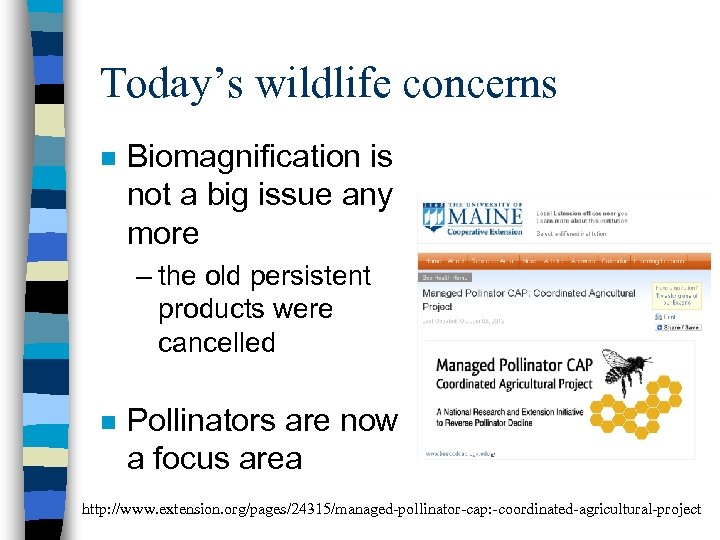 Today's wildlife concerns n Biomagnification is not a big issue any more – the