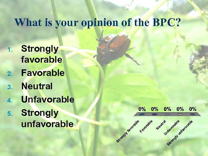 What is your opinion of the BPC? 1. 2. 3. 4. 5. Strongly favorable
