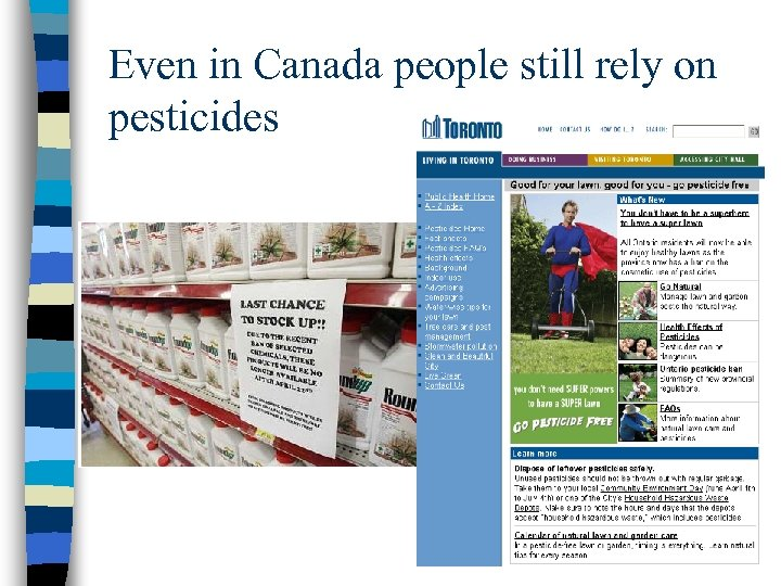 Even in Canada people still rely on pesticides