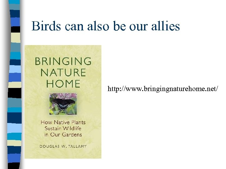 Birds can also be our allies http: //www. bringingnaturehome. net/